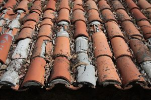 Roof Tiles Heritage Training
