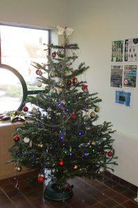 Castlecombe Primary School Christmas Tree
