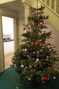 Dorset Road Infant School Christmas Tree