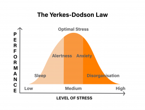 Yerkes-Dodson Law Graph